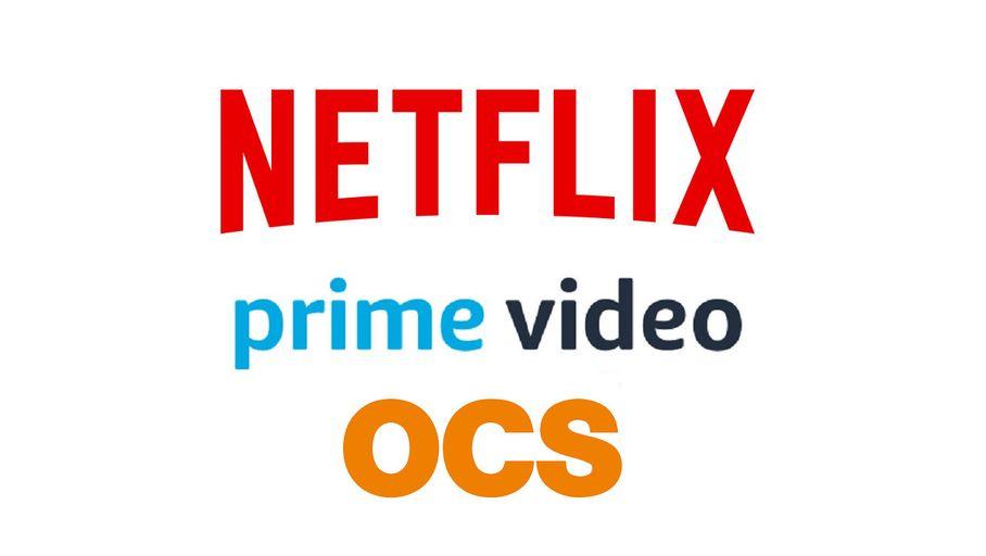 Dossier : Netflix, Amazon Prime Video, OCS : les films et séries à ne pas rater en novembre