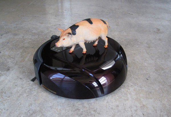 Illu Aspi compatible animal domestique