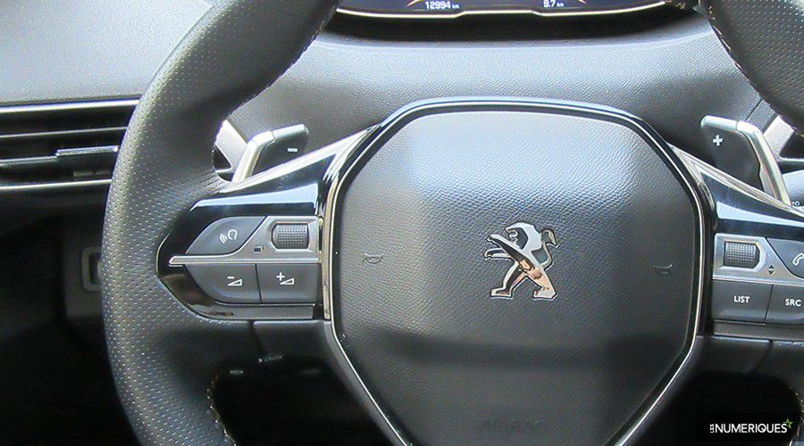 Peugeot-3008-vocal-WEB.jpg