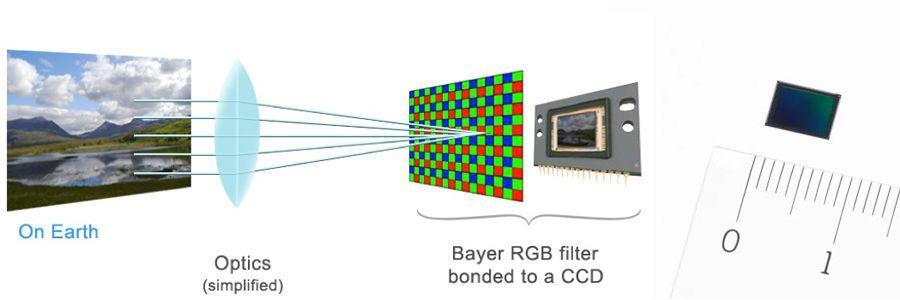 Bayer_Smartphones.jpg