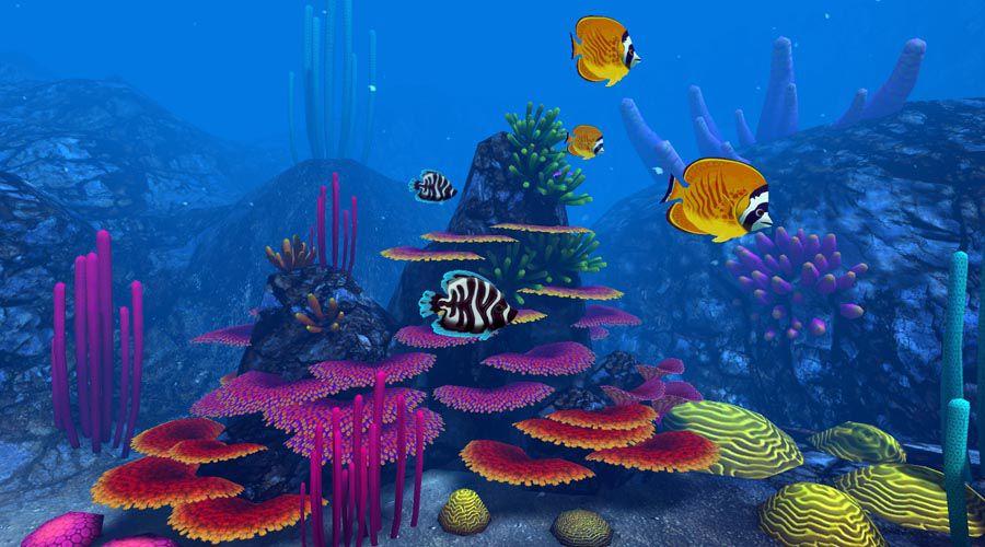 1_Ocean Rift.jpg