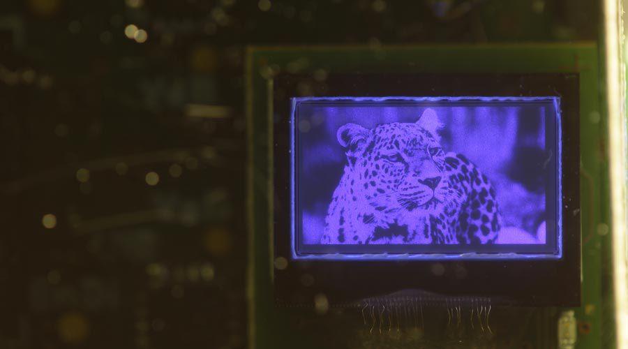 micro-led-leti.jpg