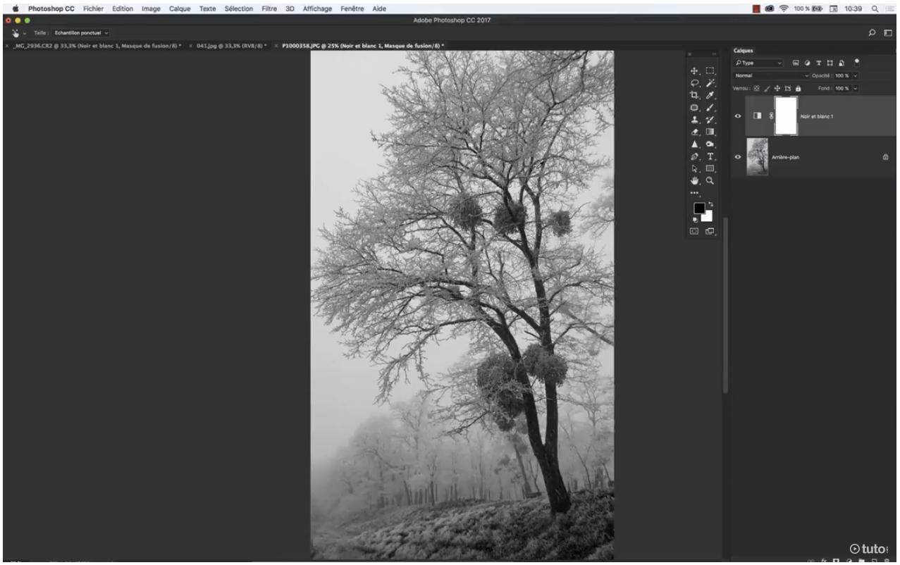 Tuto vidéo d'Antoine Defarges conversion noir & blanc avec Photoshop