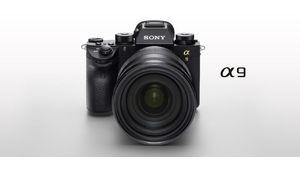 Sony A9 : l'hybride 24x36 que les professionnels attendaient