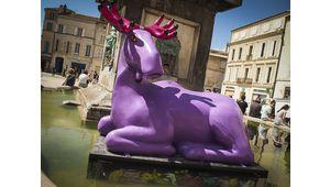 Arles 2014 : premiers bilans