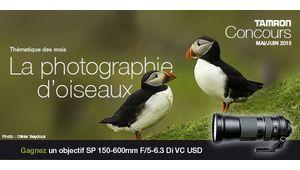 Concours Tamron : la photographie d'oiseaux