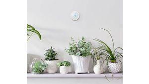 IFTTT met en garde les utilisateurs des appareils connectés Nest