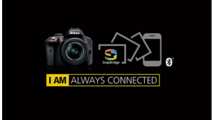 L'app photo Nikon Snapbridge passe en version 2.6 et accepte les fichiers Raw