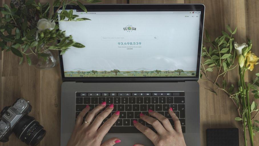 Le moteur de recherche Ecosia a planté 100 millions d'arbres