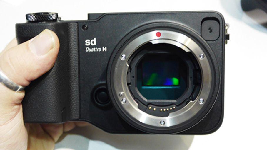 Capteur Foveon X3 : Sigma recommence à zéro le développement de son capteur 24x36 pour monture L - Les Numériques