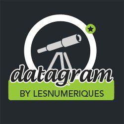 datagram logo