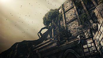 Dark Souls 2 01 350px