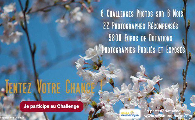 Challenge Photo 5