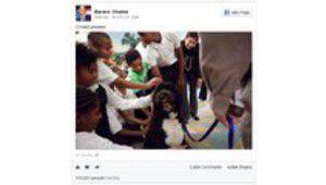 Intégration de contenu : Facebook singe la concurrence