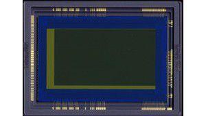 Canon teste un capteur ultra-sensible sur des lucioles