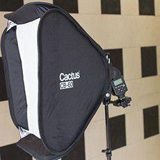 cactus CB-60