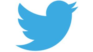 Twitter: près de 23 millions de comptes actifs sont des