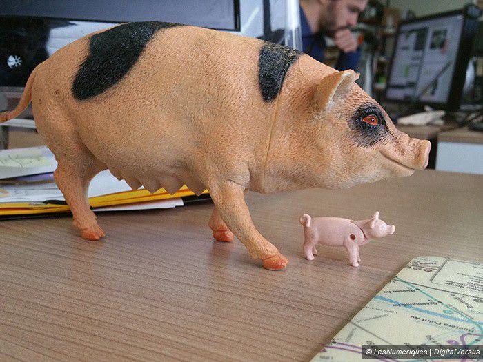 Samsung Galaxy Note 4 Pig 3