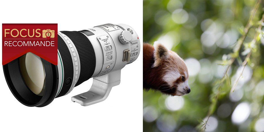 Canon 400mm