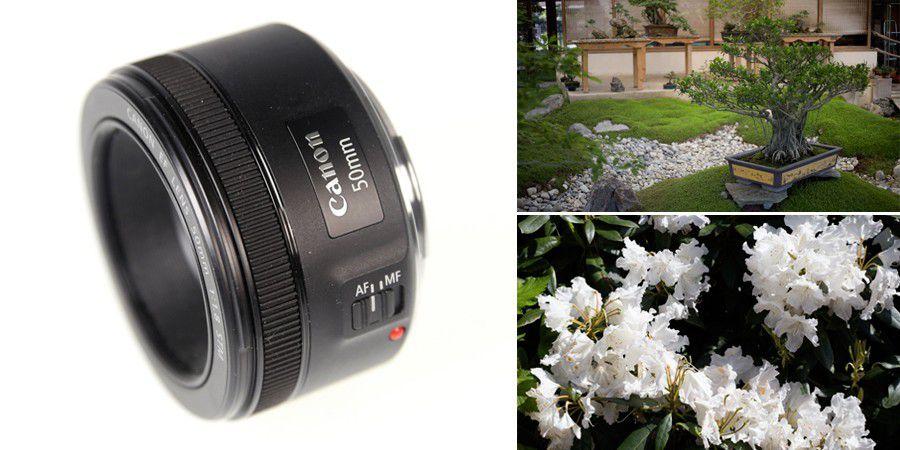 Canon 50mm f1 8