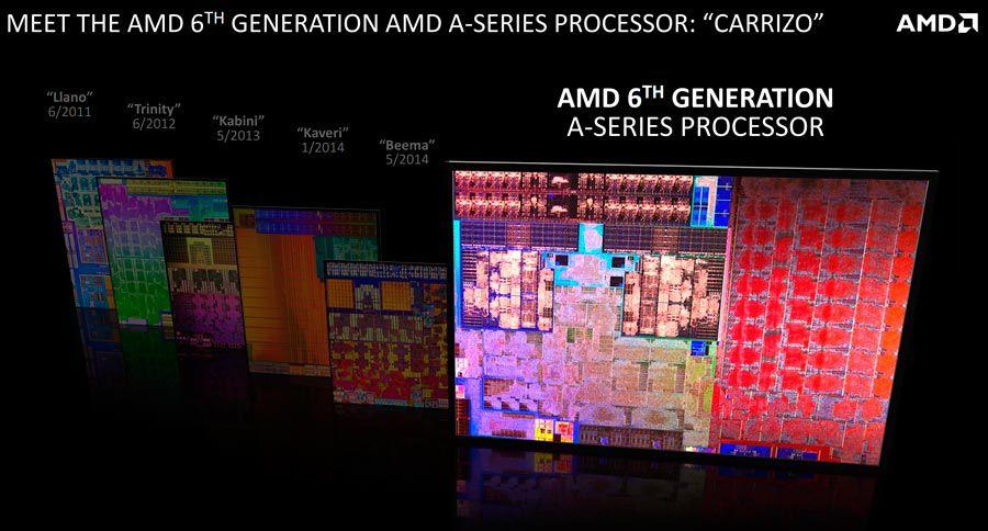 AMD1(1)