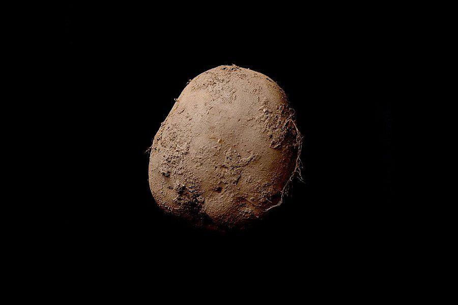 1_kevin_abosh_potato.jpg