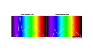 Les leds émettent-elles des UV dangereux?