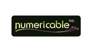 Hadopi: Numericable a dénoncé 1531 fois le même abonné innocent