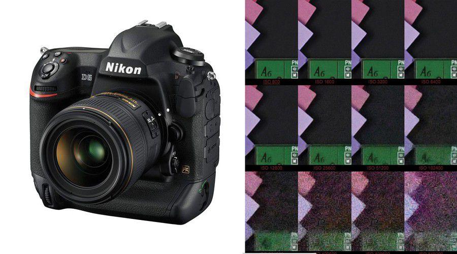 Nikon d5 12800iso detail