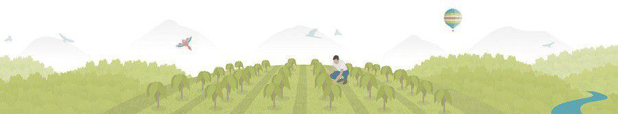 Ecosia illustration