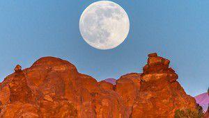 Quatre astuces pour mieux photographier la pleine lune du 14 novembre
