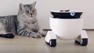 Roboming Fellow: le petit robot compagnon multi-fonctions