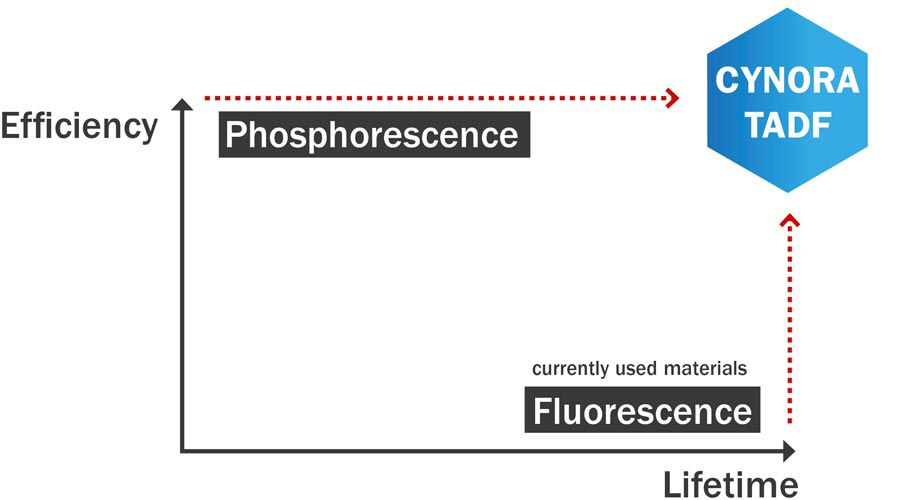 1_TADF_pHOSPHORESCENCE_fLUORESCENCE_02.jpg