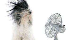 GfK: l'été profite une fois encore aux ventes d'électroménager
