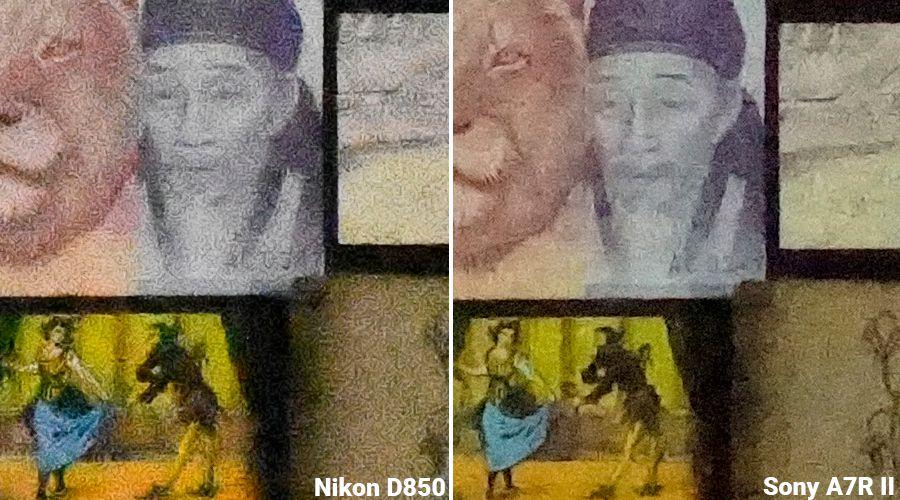 1_NikonD850_vs_D810_vs_A7RII_vs_EOS5dsR_LesNumeriques_ISO102400.jpg