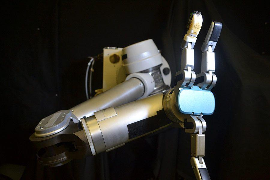 UW-robot-braspx.jpg