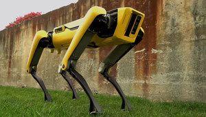 Le robot-chien SpotMini de Boston Dynamics se refait le pelage