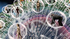 Le Muséum d'histoire naturelle de Paris ouvre un espace dédié à la VR