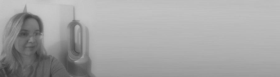 Avis Marina Dyson Pure Hot+Cool Link