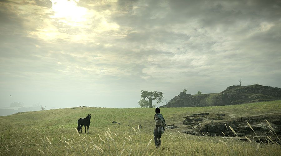 Shadow_of_the_Colossus-02.jpg