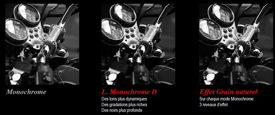 panasonic-lumix-GX9-modes-monochrome.jpg