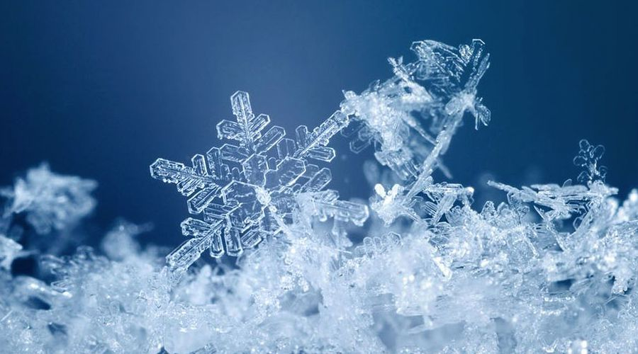 photographier-des-flocons-de-neige-en-macro-12b47e37__1260_600__0-0-1302-620.jpg