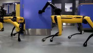 [MàJ] Le robot-chien de Boston Dynamics se confronte à un humain