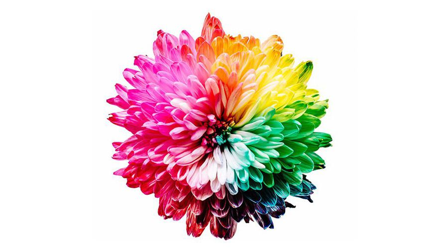 utiliser-la-theorie-des-couleurs-1c9b9937__1260_600__20-8-1280-608.jpg