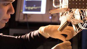 Avec Bristlecone, Google marche vers la suprématie quantique