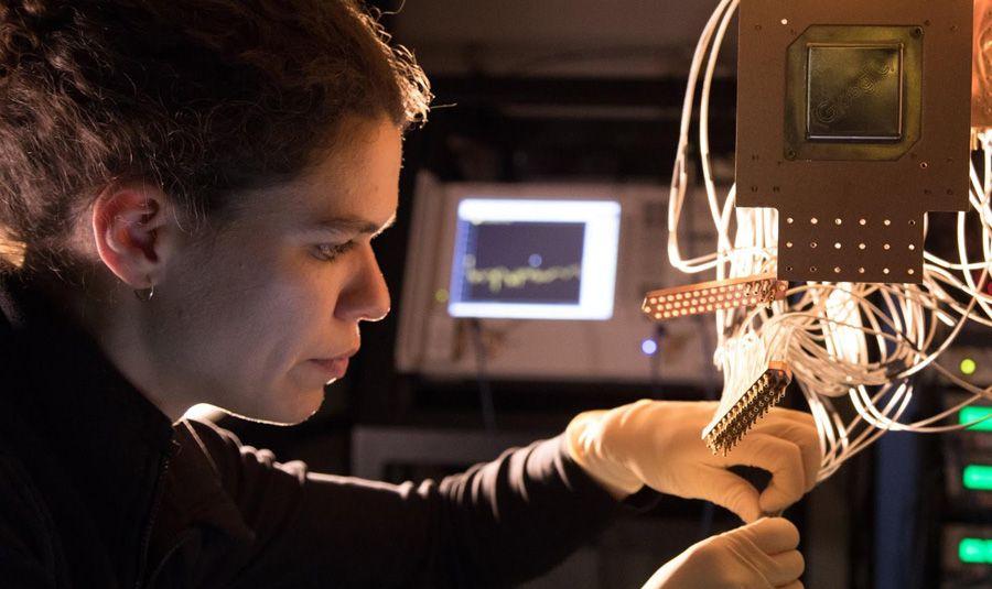 google quantum bristlecove.jpg
