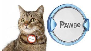 iPuppy Go: chiens, chats et autres bestioles sous surveillance