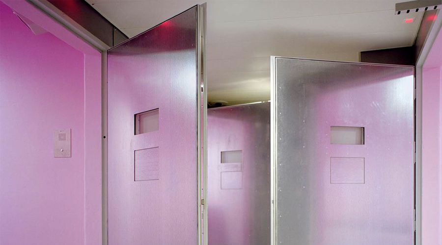 pink-cells-d-angelique-stehli-a7fca747__1260_600__0-82-1837-957.jpg