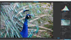 DxO annonce les mises à jour de la suite Nik Software et de PhotoLab