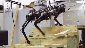 Le robot-chien du MIT se déplace sans caméra